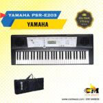 portable-keyboard-psre203